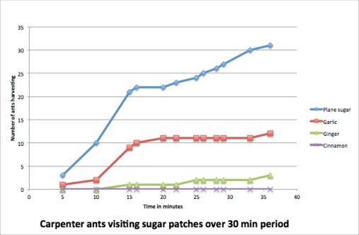 ant signaling graph
